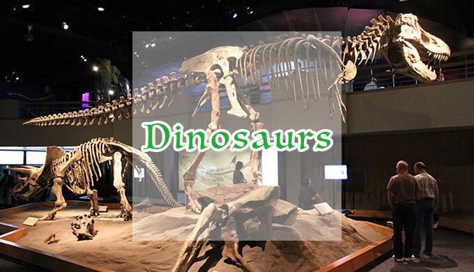 州立恐竜公園とドラムヘラー