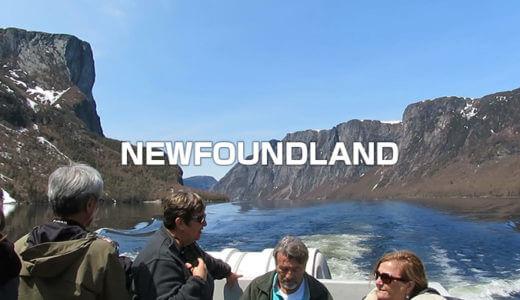 ニューファンドランドの旅