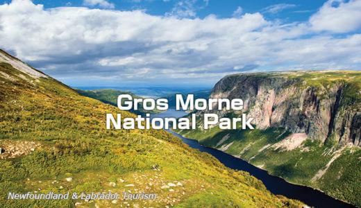 地球の歴史に触れる旅~グロスモーン国立公園とセント・ジョンズ