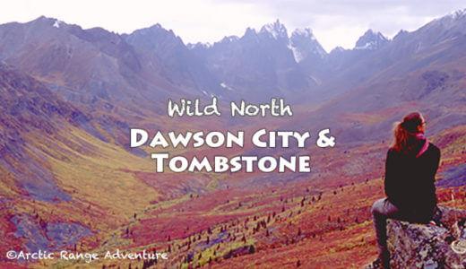 紅葉のユーコンを満喫! ドーソン・シティとツンドラ紅葉ハイキング