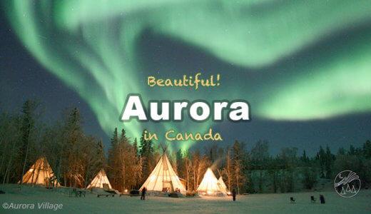 カナダ オーロラの旅