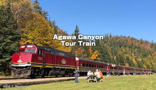 絶景列車 アガワ・キャニオン・ツアー・トレイン の旅