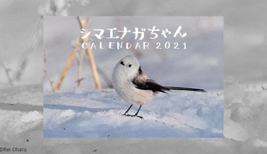 小原玲さんの シマエナガちゃんカレンダー 2021