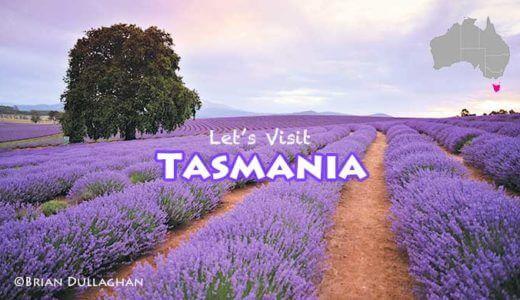 タスマニアに行こう